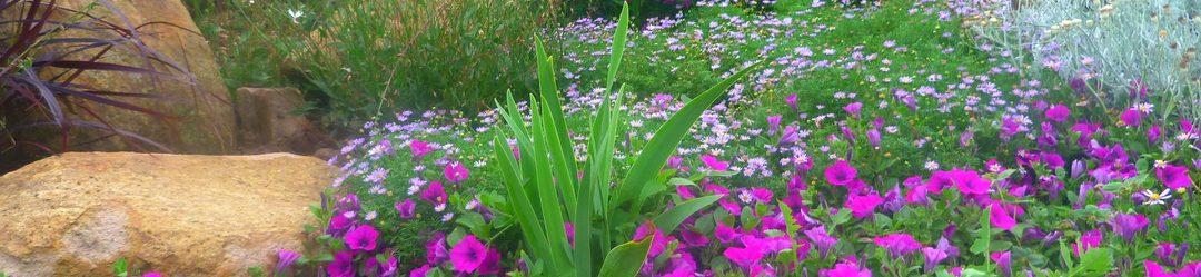 PAISAGISMO: Jardins naturalistas